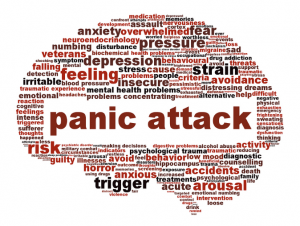 what is a panic attack brain