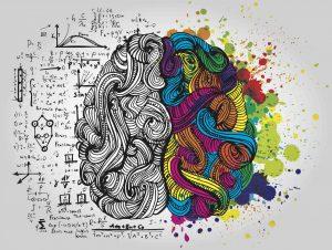 Optimize your brain
